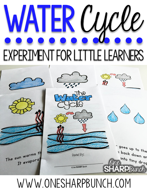 Learn all about rain this spring with over 35 math, science, ELA, writing and art activities in this 165 page PAIRED NONFICTION & FICTION INTEGRATED RAIN UNIT! These rain activities are sure to keep your kiddos engaged as you learn about rain and the water cycle! Craftivities, vocabulary cards, student dictionaries, math and literacy centers, read aloud activities, emergent readers, and MORE!